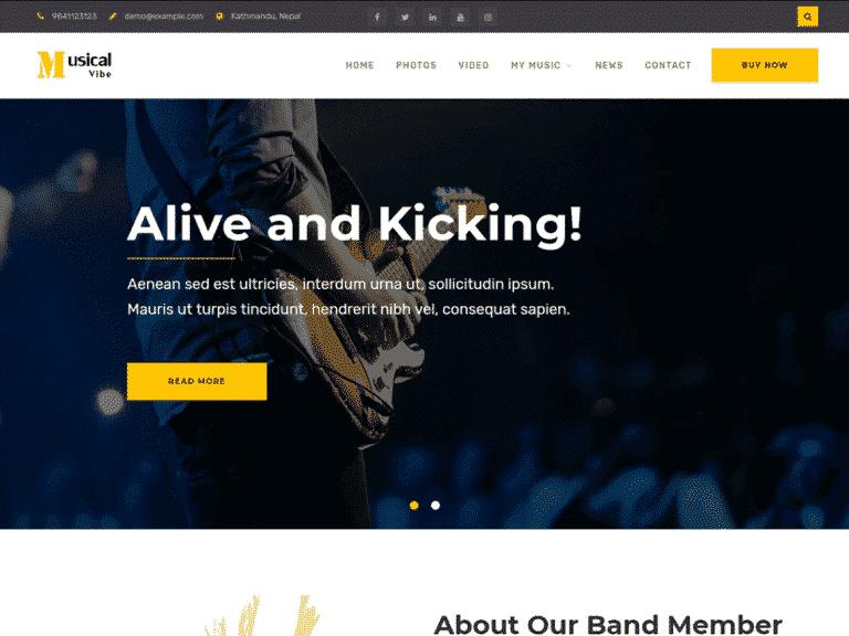 Diseño de paginas web para musicos musical vibe